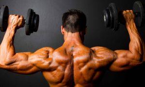 anabolisme musculation