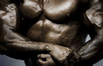 hormones de croissance musculation
