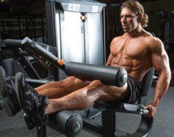 leg curl musculation des jambes