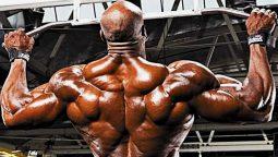 meilleur exercice musculation dos