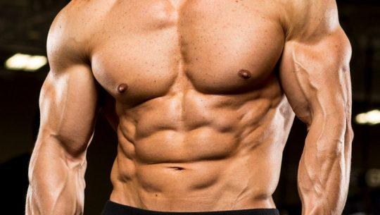 suivre une cure de testostérone en musculation